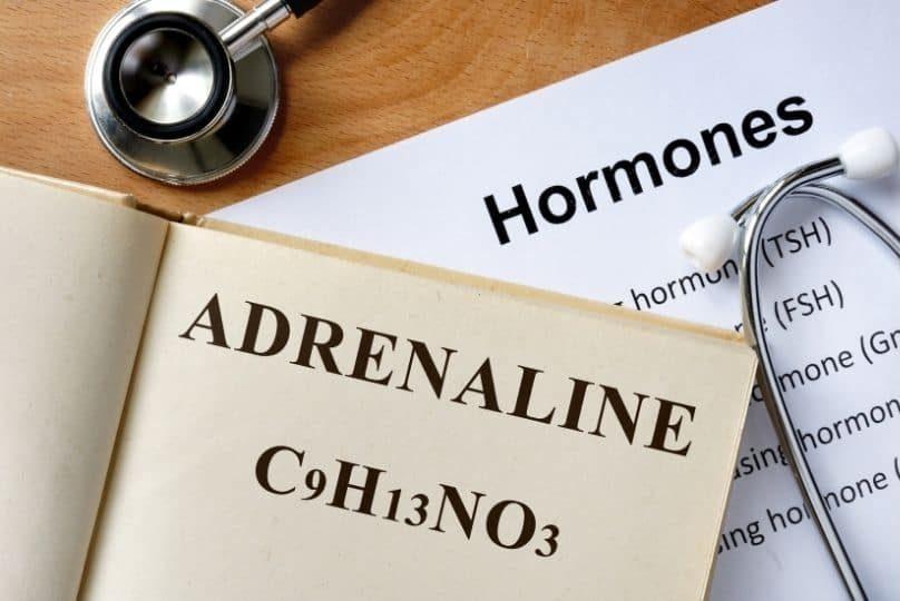 Adrenaline Stress Hormones Gilbert AZ