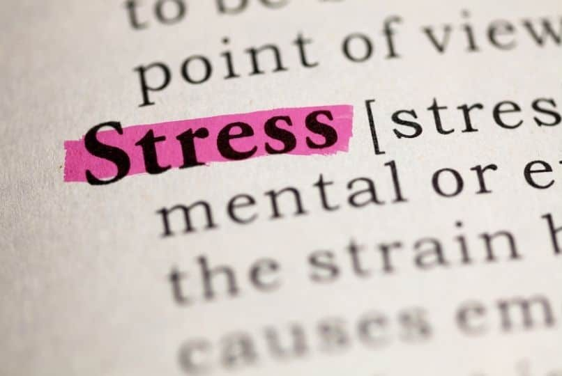 The History of Stress Gilbert AZ